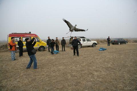 河南省野生动物救护中心