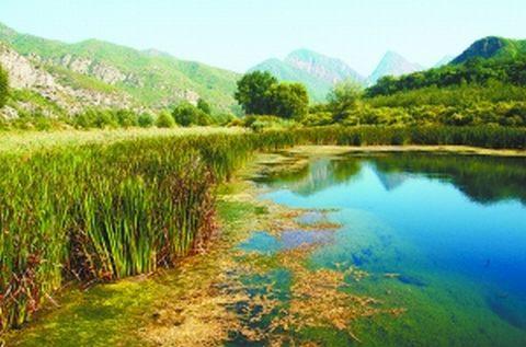 怀沙、怀九河市级水生野生动物自然保护区