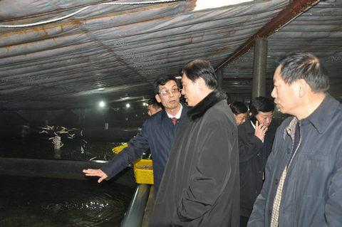 李汪洋厅长,卢江宁副厅长到葫芦岛市调研