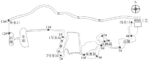 北京动物园湖水质改善工程实施效果评价