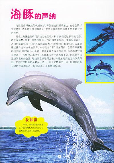 3d动物世界:海洋动物(附3d立体特殊眼镜)